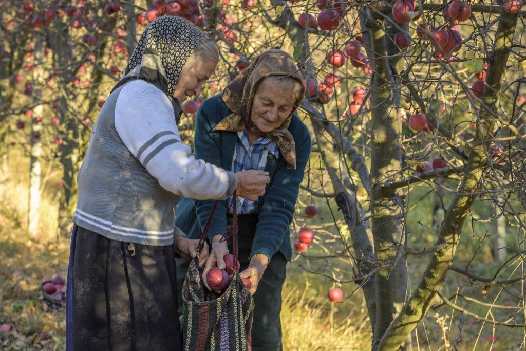 Activitate rurală în Măgura Zimbrilor ©Dan Dinu