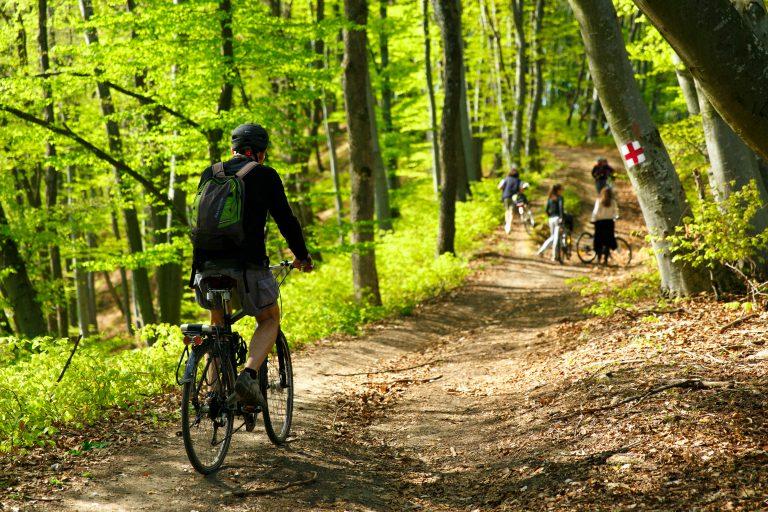 transilvania biciclete WWF