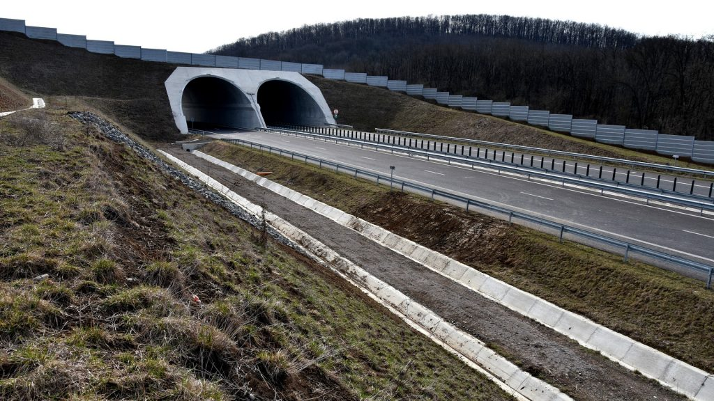 Eocduct Branisca Romania_Transgreen project (14)