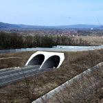 Eocduct Branisca Romania_Transgreen project (2)