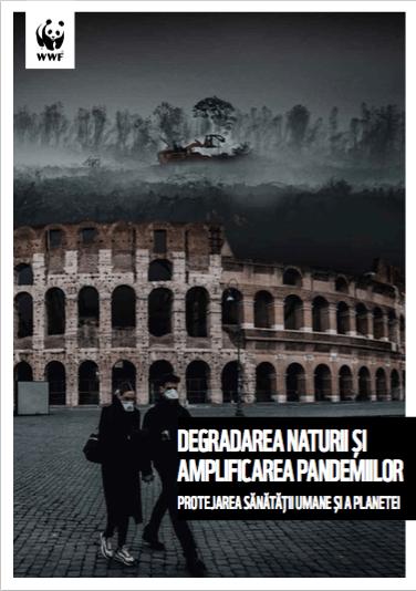 Raport Degradarea naturii si pandemiile