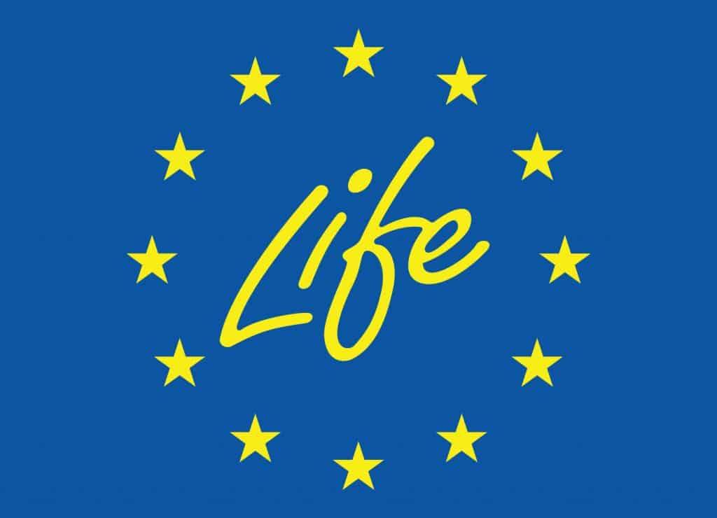 LIFE_Flag