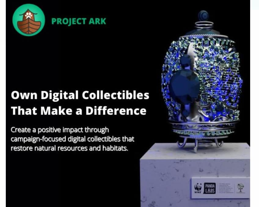 NFT eggs campaign Panda Labs and Project Ark